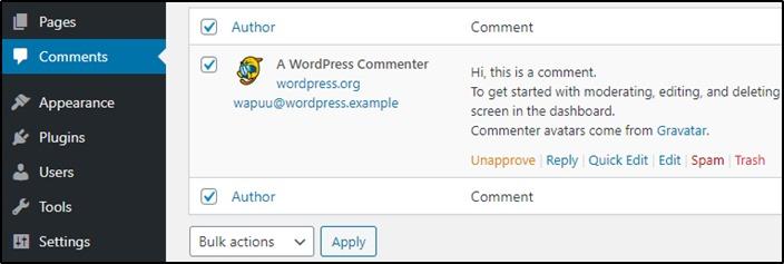 Delete default comment on WordPress