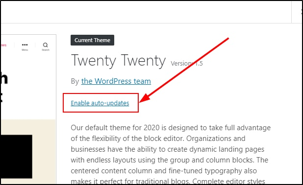 Enable auto-update for WordPress themes